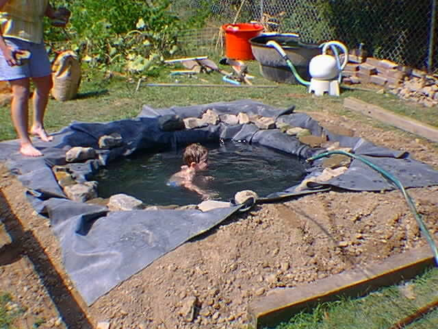 Бассейн для уток