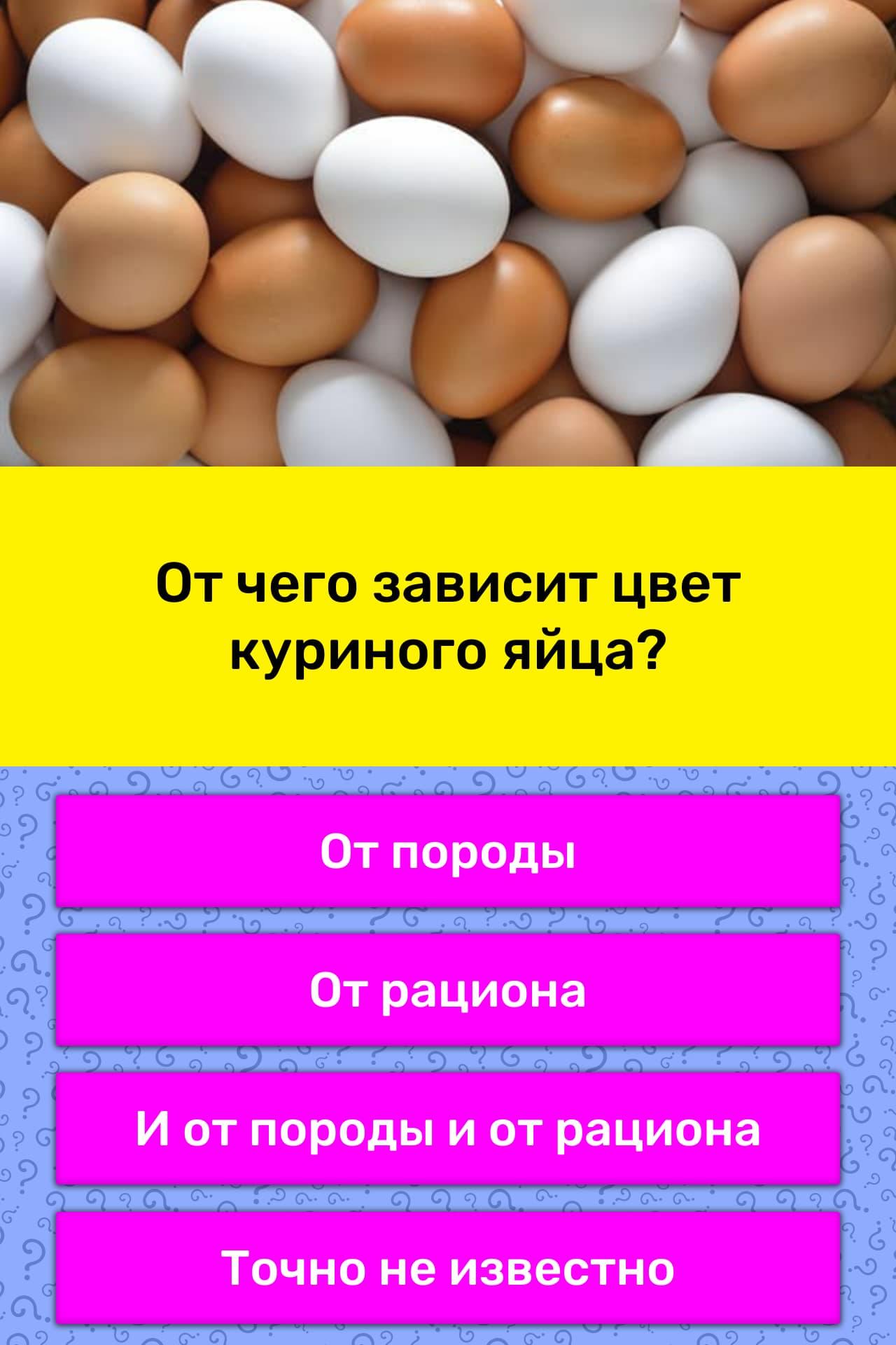 Куриные яйца — польза и вред для организма мужчины и женщины. полезные свойства и противопоказания
