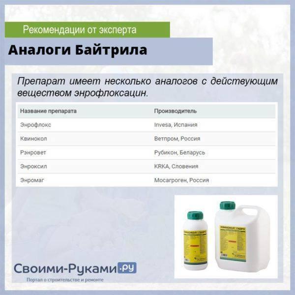 Все об антибиотиках для бройлеров