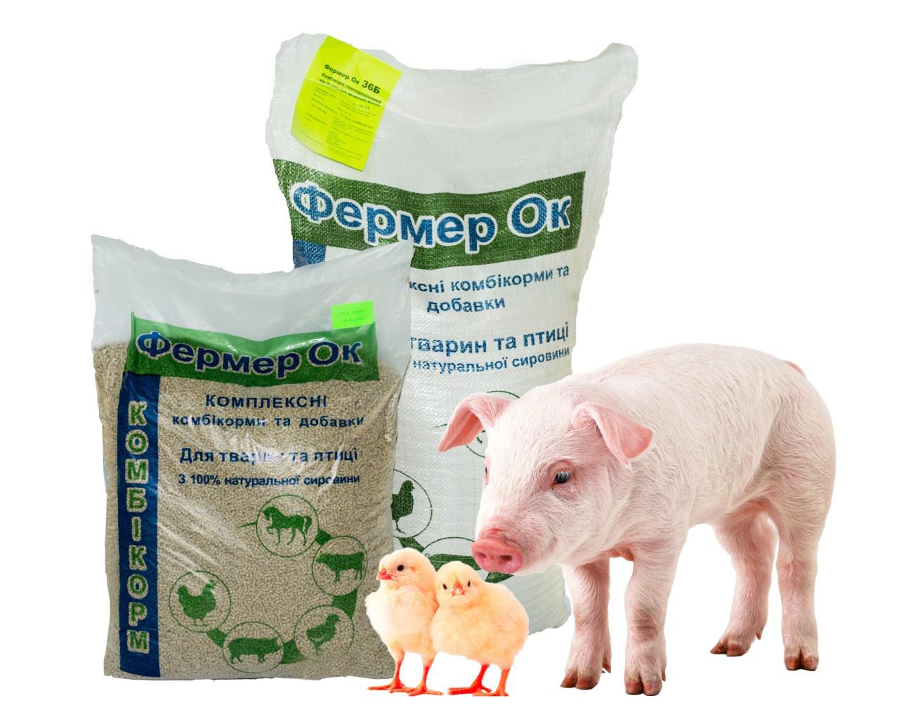 Премиксы для свиней: биологические свойства, способ применения