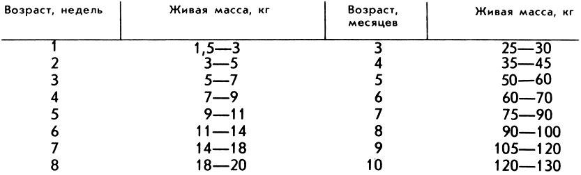 Вес свиньи. как узнать вес без весов в среднем. таблица измерения веса