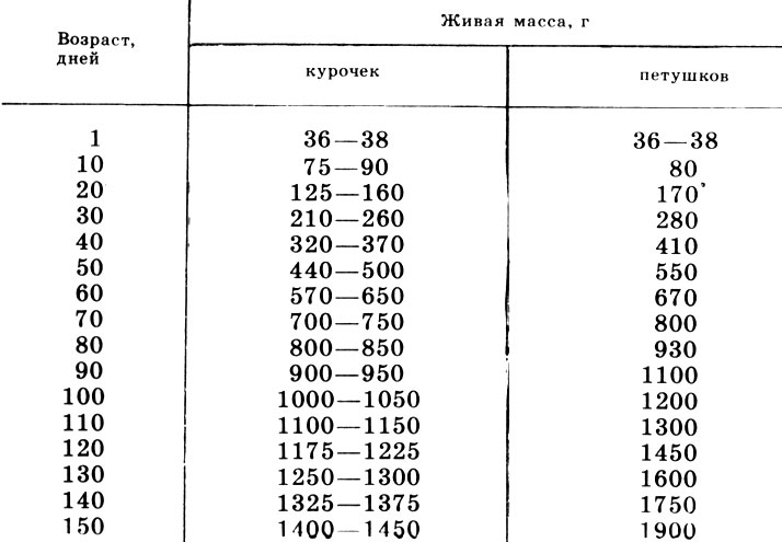 Сколько должен весить бройлер в 1 месяц, через две недели, через неделю и при рождении?