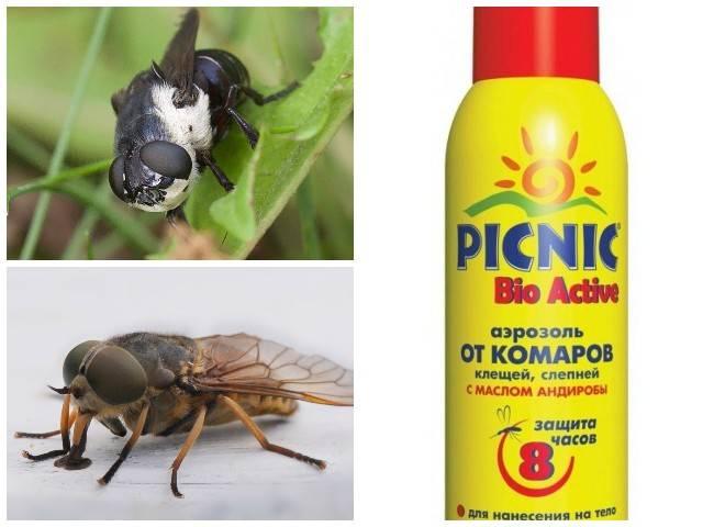 Как защитить корову от клещей, мух, гнуса, агропромышленный вестник