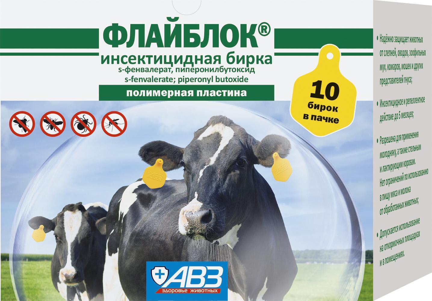 Лечение народными средствами, если у коровы или теленка пропала жвачка