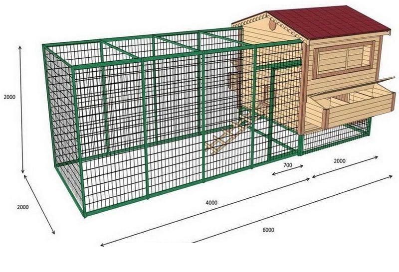 Загон для кур: разновидности, инструкции по строительству