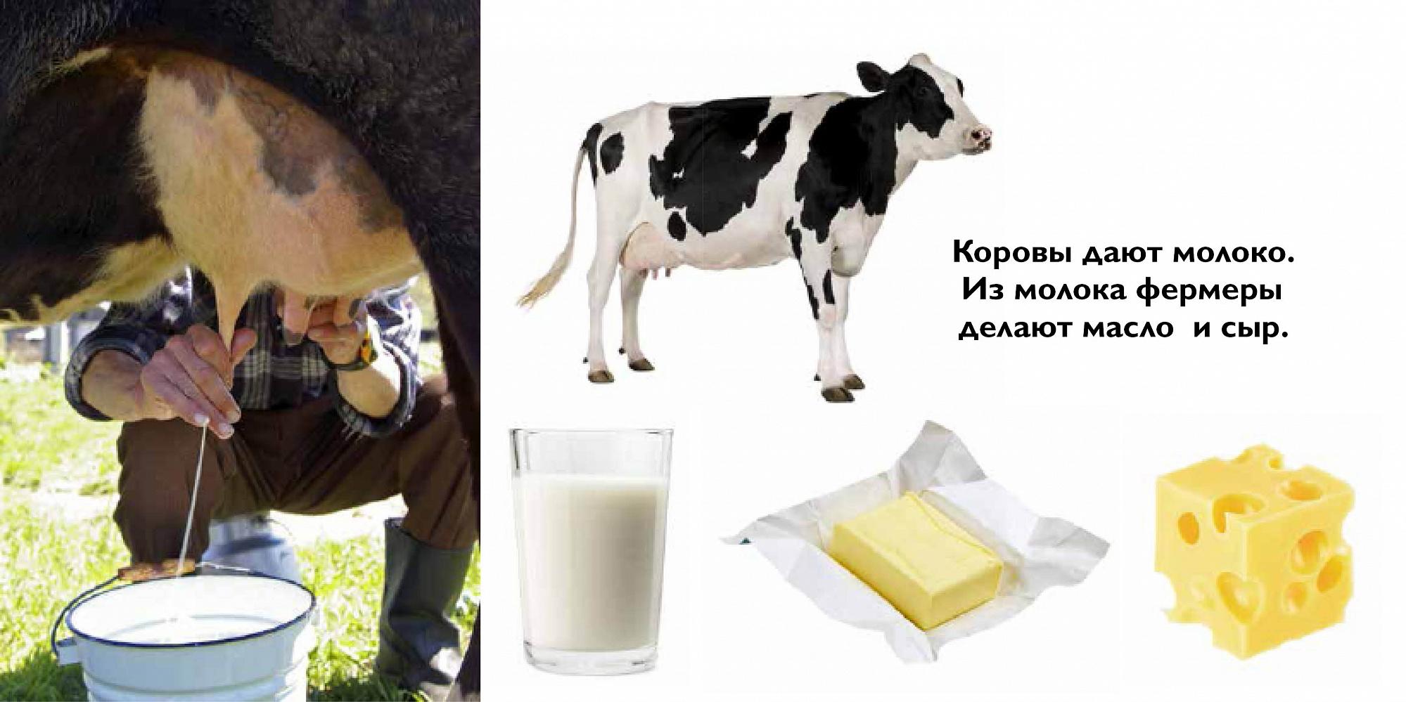 Почему корова дает мало молока: с чем связано снижение надоев