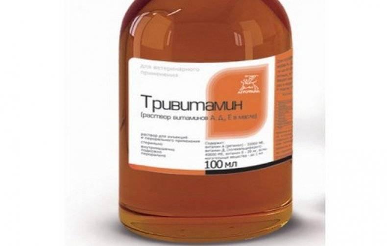 Тривитамин: инструкция по применению для птиц, дозировка