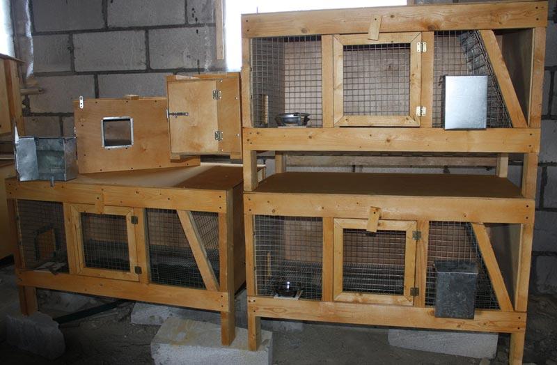 Какой пол лучше для кроликов: реечный, сетчатый или сплошной