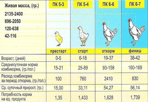 Байтрил для кур, бройлеров и цыплят: инструкция по применению и дозировка