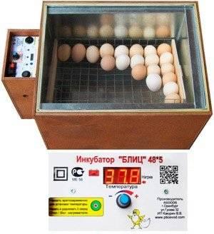Инкубаторы блиц — мини-фабрика по производству цыплят