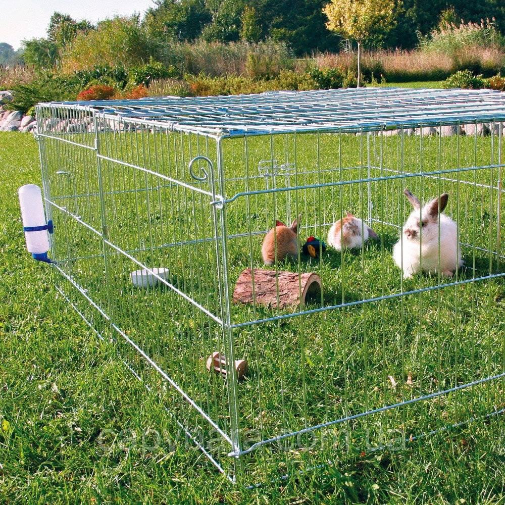 ✅ о вольере для кроликов: плюсы такого содержания, как сделать своими руками - tehnomir32.ru