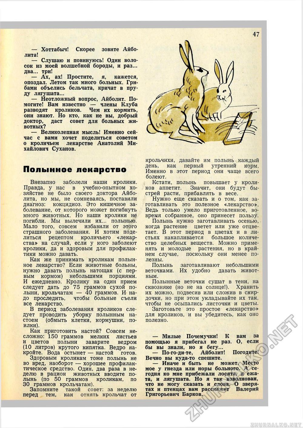 Можно ли давать кроликам пижму? - домашние наши друзья