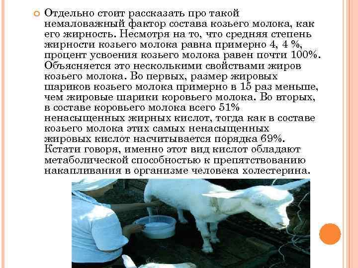 Жирность коровьего молока - вред и польза для здоровья