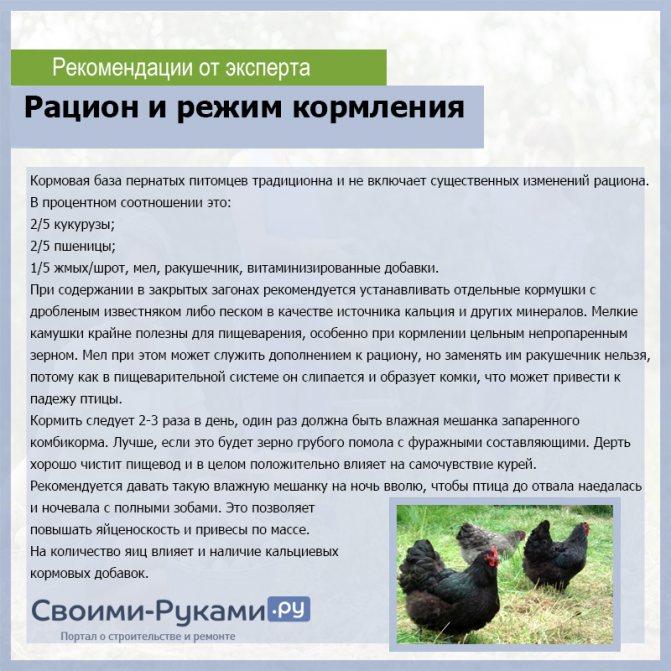 Подлинная история люйкеданьцзи (и ухейилюй в частности) | fermer.ru - фермер.ру - главный фермерский портал - все о бизнесе в сельском хозяйстве. форум фермеров.