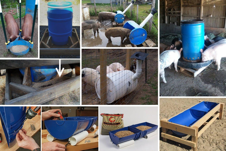 Кормушки для свиней своими руками: чертежи, фото и видео