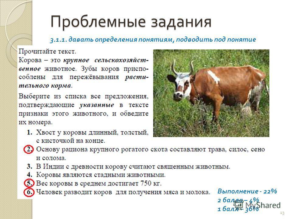 Виды и симптомы эндометрита у коров, схема лечения и профилактика