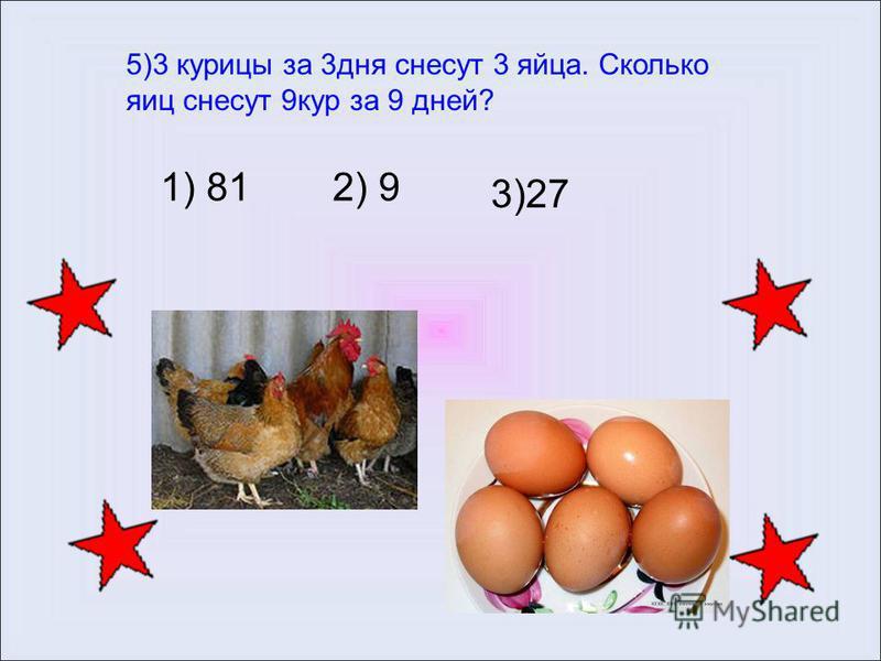 Сколько яиц несет курица несушка в день, в неделю, в месяц и год?