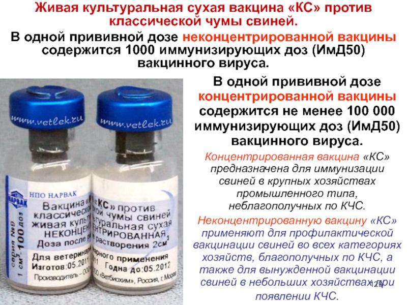Сертификат соответствия росс ru.фв01.в27944 | вакцина «кс» против классической чумы свиней живая культуральная сухая – лекарственный препарат в форме лиофилизированной массы для иммунизации свиней против классической  чумы