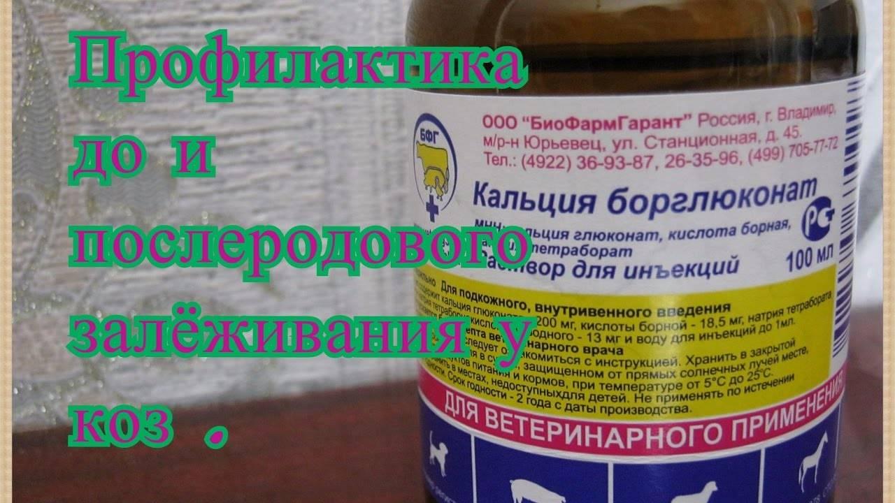 Кальция борглюконат: показания к применению, дозировка лекарства, правила использования препарата