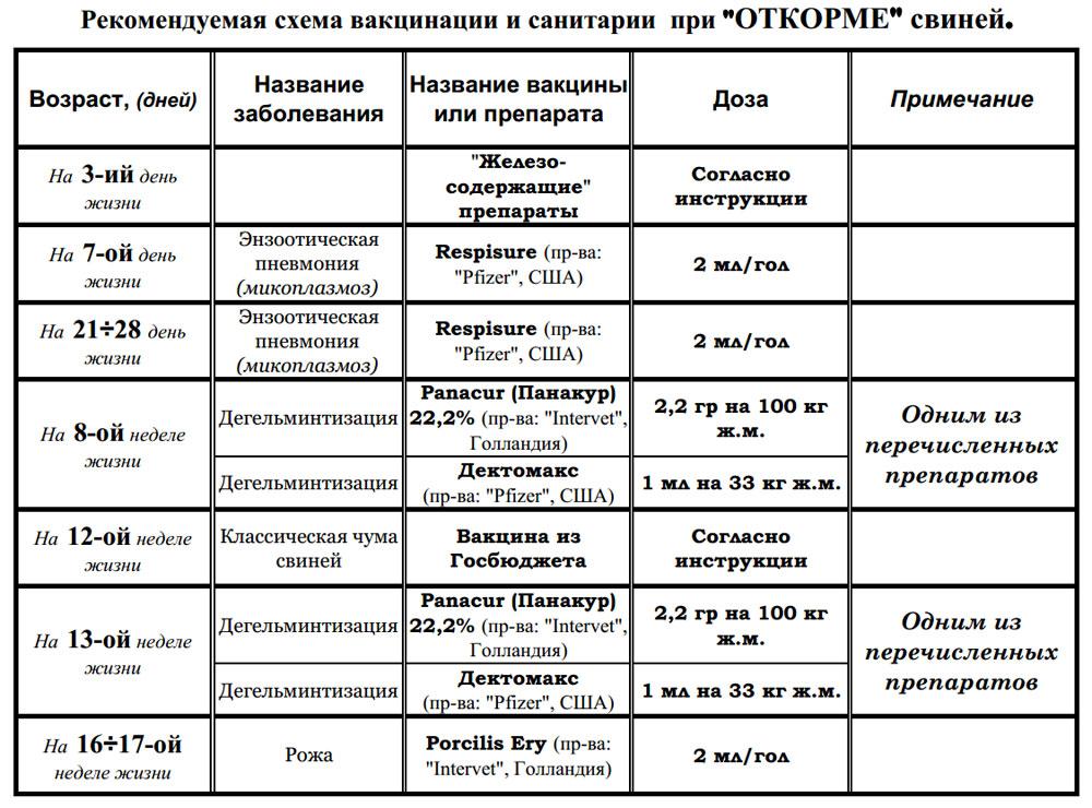 ✅ о прививках поросятам: вакцина ппд для свиней, инструкция, какие уколы ставят - tehnomir32.ru