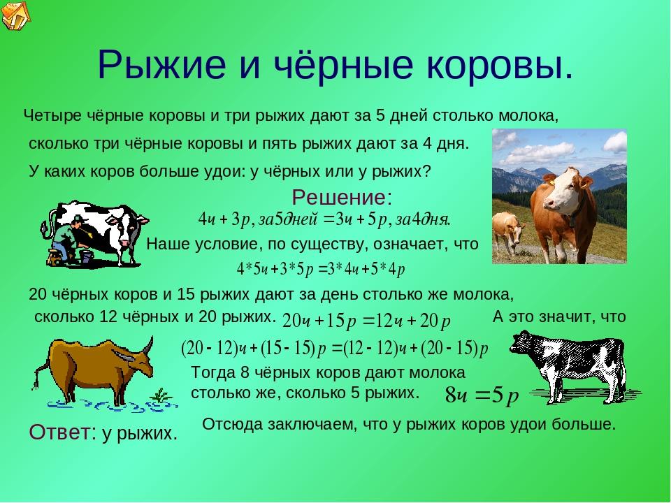 Сколько молока дает корова в сутки: среднее значение в день