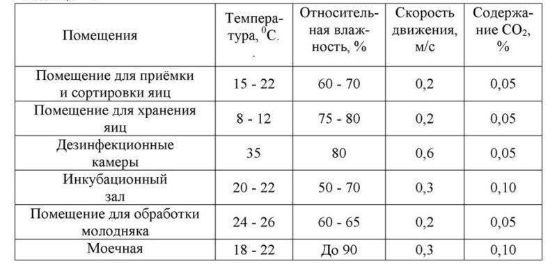 Таблица температуры в инкубаторе для утиных яиц и тонкости выведения птенцов