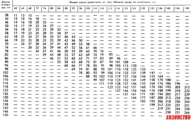 Подробная таблица веса поросят по месяцам: сколько должен весить поросенок