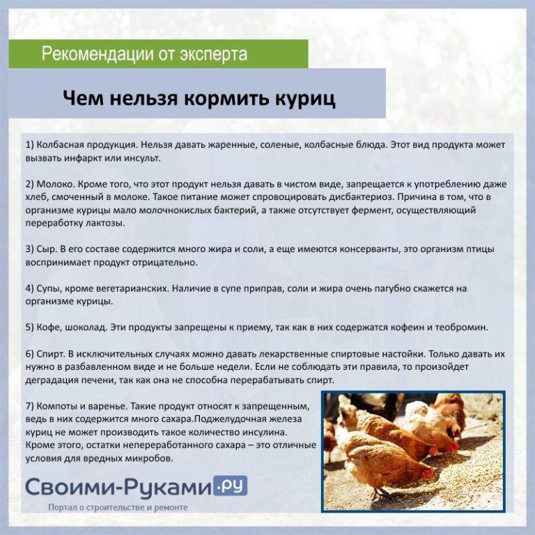✅ можно ли курам речную рыбу. можно ли давать сырую рыбу курам и как кормить рыбной мукой? - cvetochki-ulyanovsk.ru