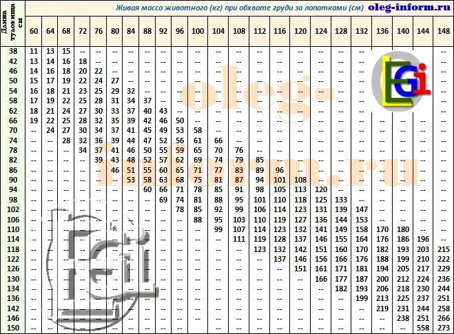 Как определить вес свиньи по таблице замеров, по возрасту, по коэффициенту упитанности?