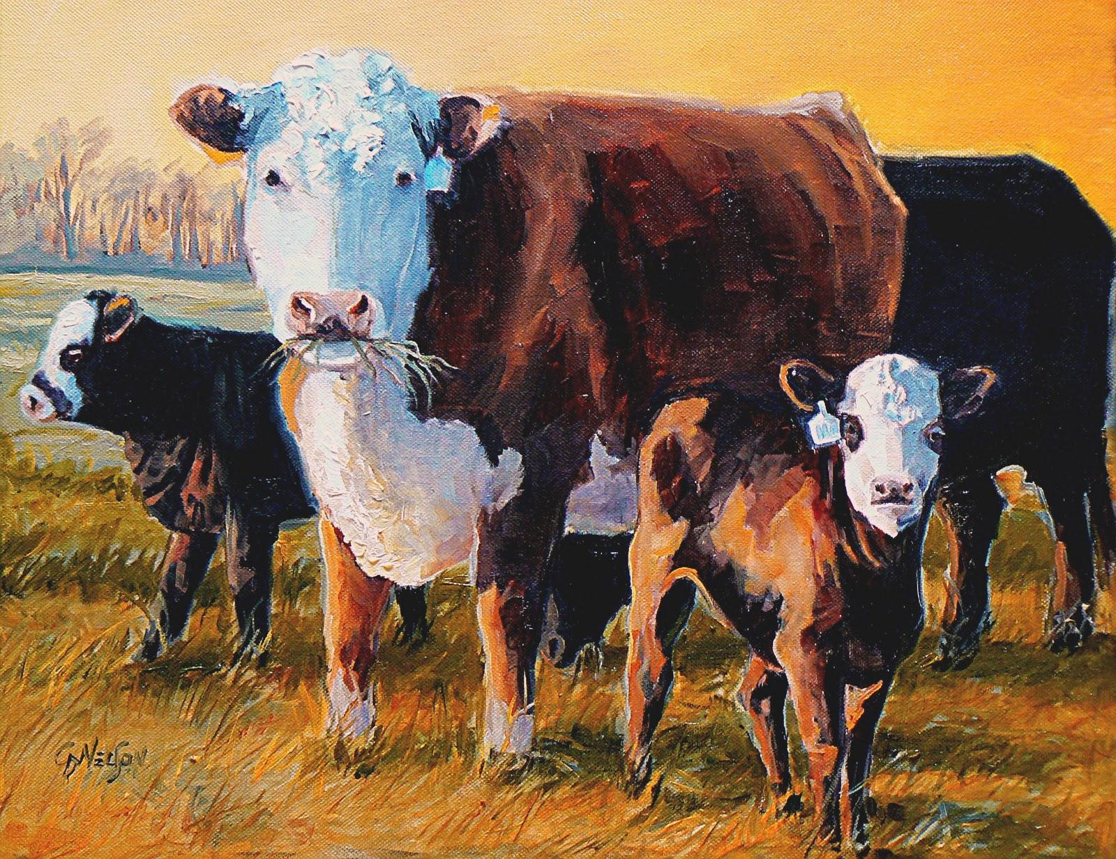 Герефордская порода коров: характеристика и описание