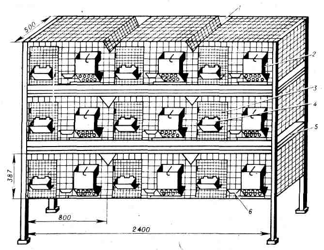 Клетки для кроликов своими руками: чертежи, размеры и пошаговая инструкция