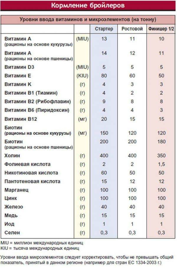 Вес бройлеров по дням и месяцам: таблица, описание