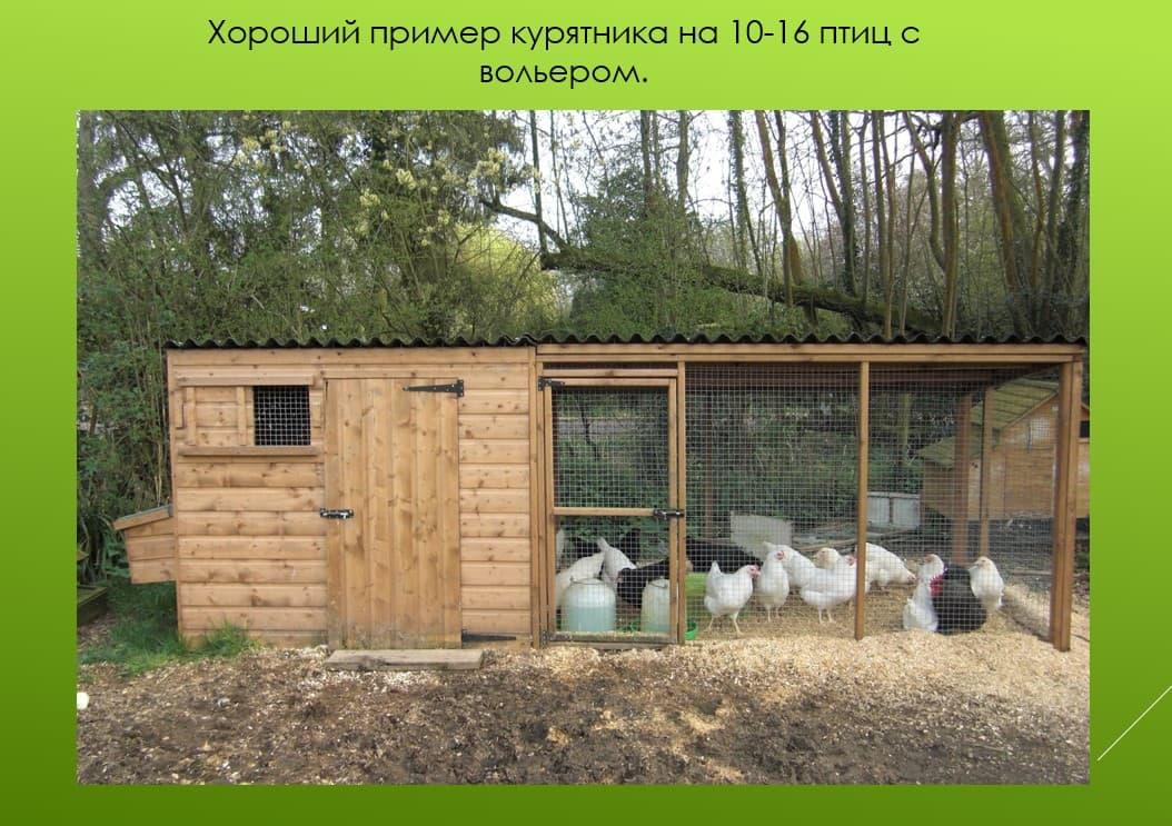 О зимних курятниках своими руками на 15, 20 кур (теплые курятники)