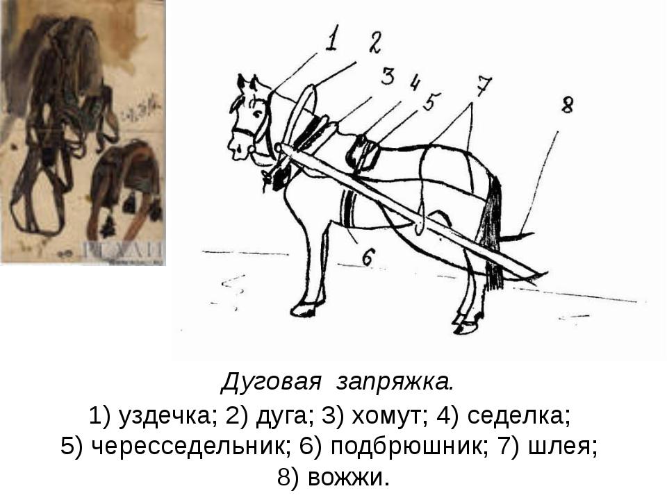 Как запрягать лошадей: описание, способы