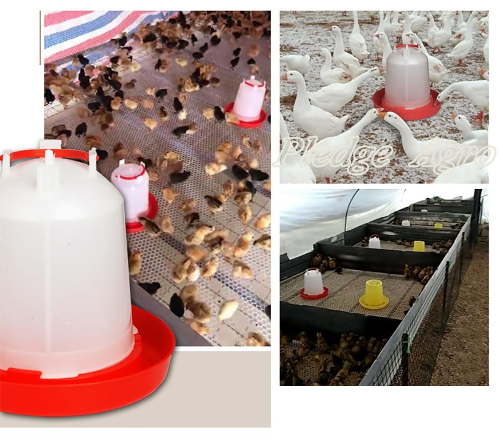 Самодельная и удобная кормушка для цыплят-бройлеров