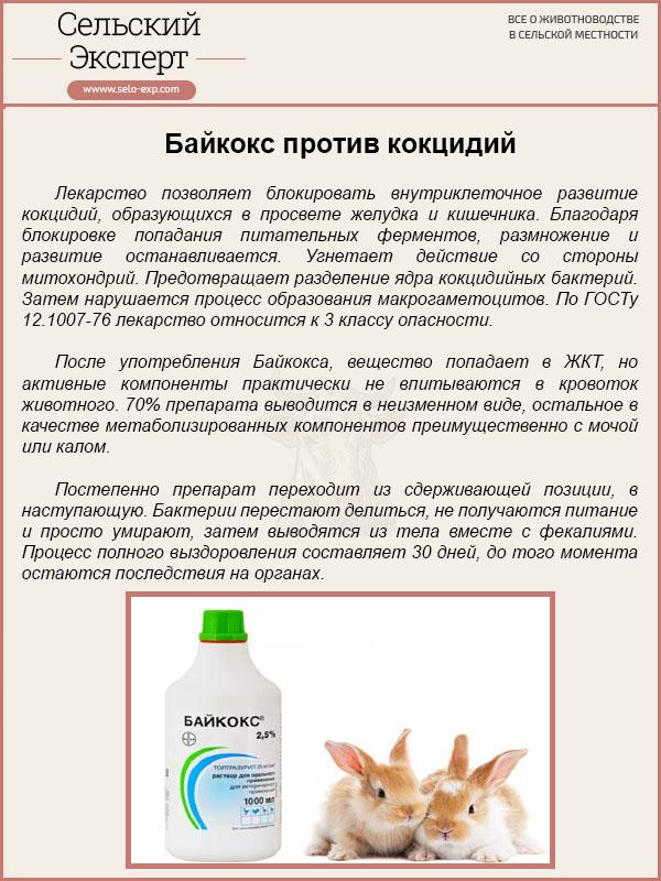 Байкокс – эффективное средство для животных и птиц, инструкция по применению | заготовки на зиму