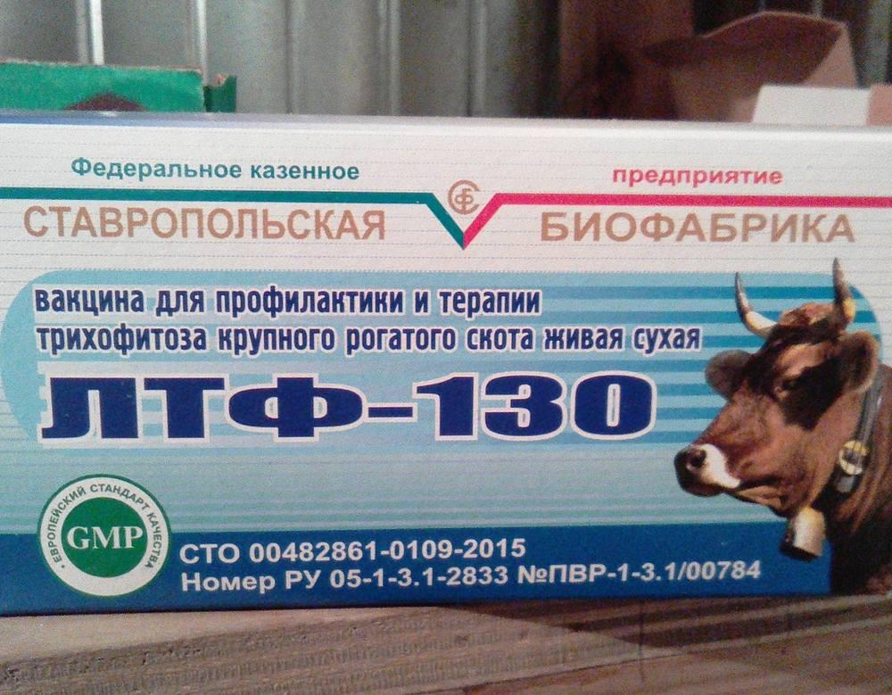 Вакцина лтф 130 для крс (применение)