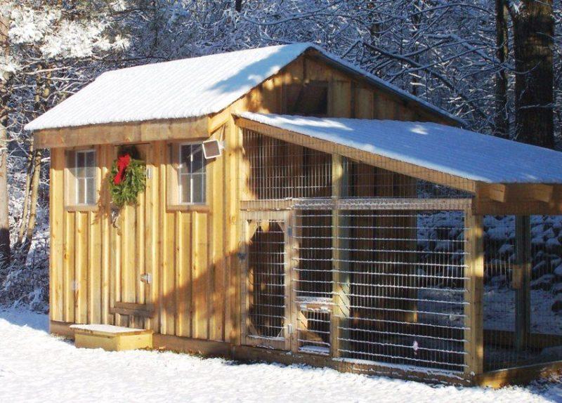 Зимний курятник своими руками на 20 кур: особенности, чертежи с размерами, подготовка к строительству и пошаговая инструкция