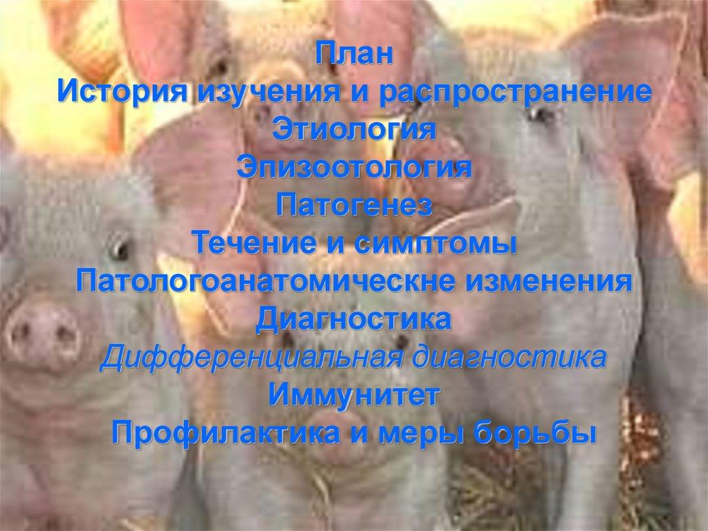 Сертификат соответствия росс ru.фв01.в27944