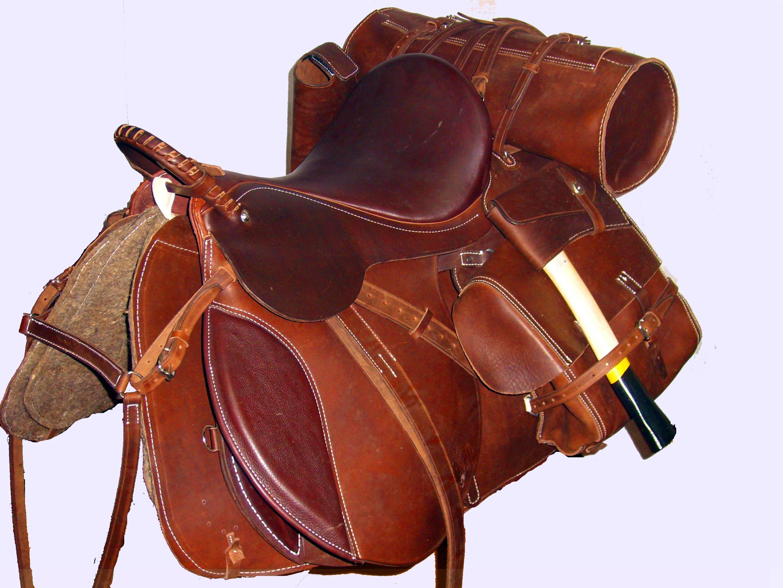 Седло для лошади: типы седел и особенности их использования