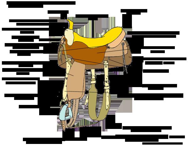 Виды седел для лошадей с описаниями