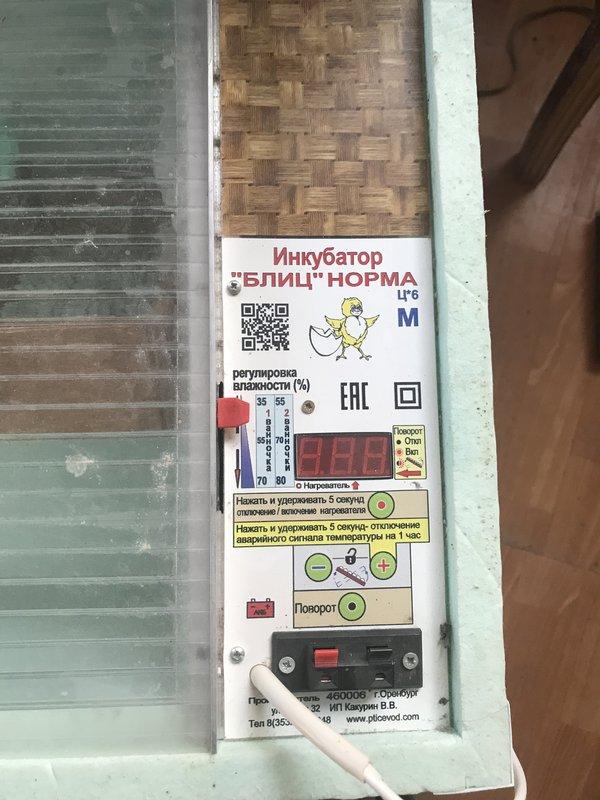 Обзор автоматического инкубатора для яиц «блиц-48»