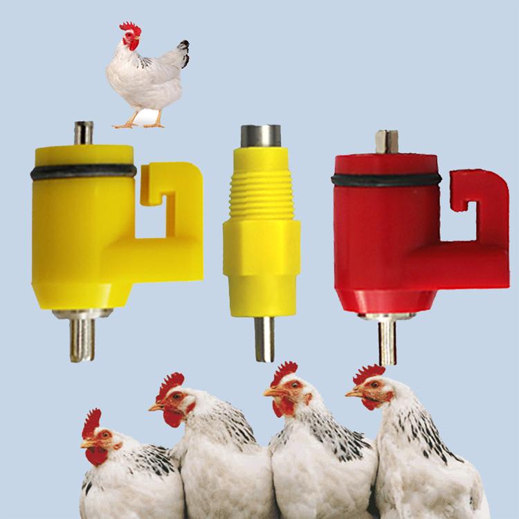 Автопоилка из пластиковой бутылки. делаем поилку для цыплят своими руками