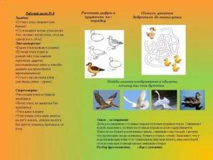 Гусята выщипывают друг другу перья: причины и методы решения проблемы