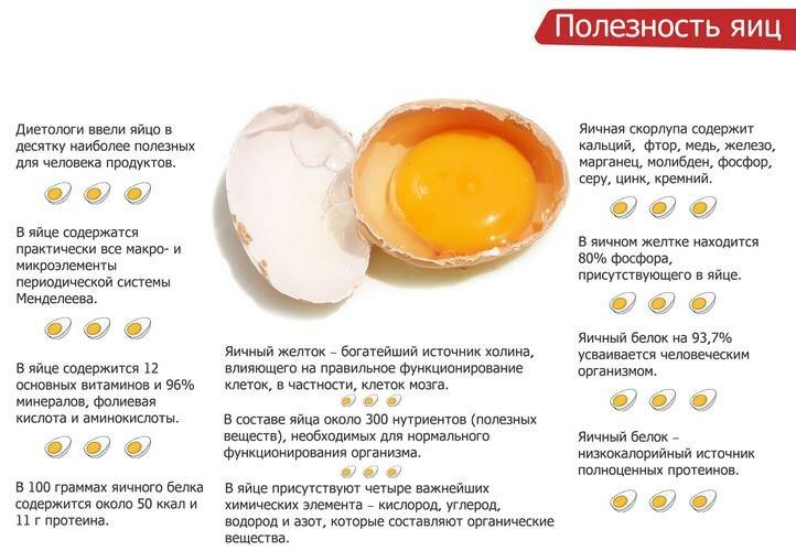Почему куриные яйца бывают белые и коричневые: от чего зависит цвет, какие полезнее