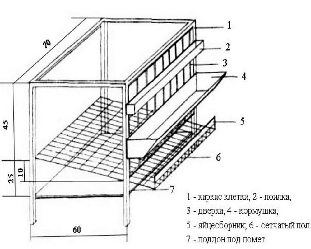 Клетки для бройлеров: как сделать своими руками