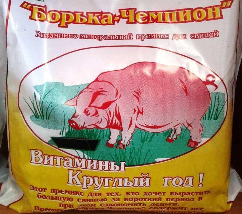 Комбикорм для свиней: выбираем и делаем правильный комбикорм своими руками