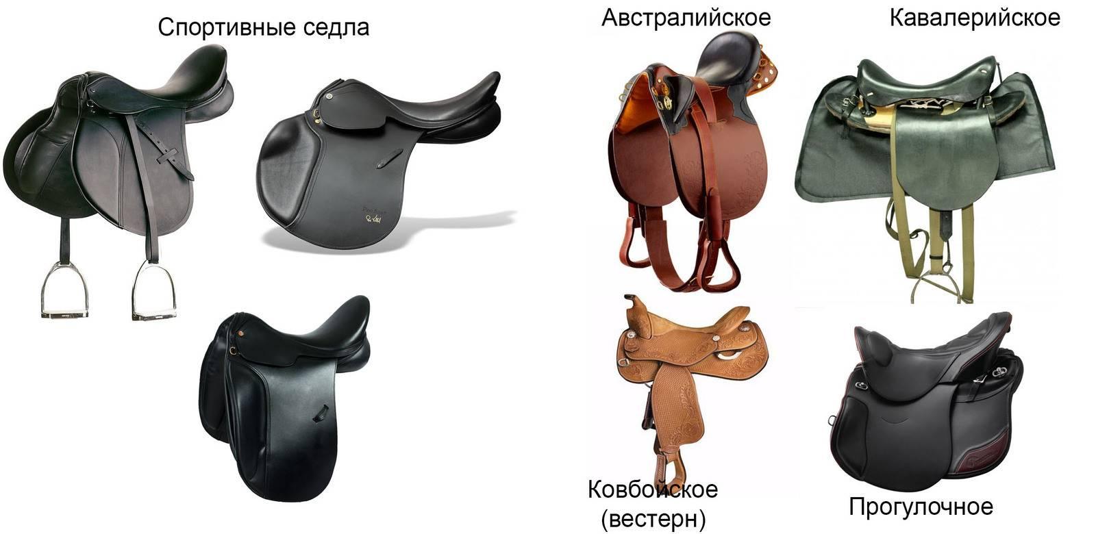 Седла для лошади: обзор видов и самостоятельное изготовление