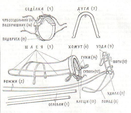 Как запрягать коня, лошадиное головное упряжное устройство, как сделать сбрую