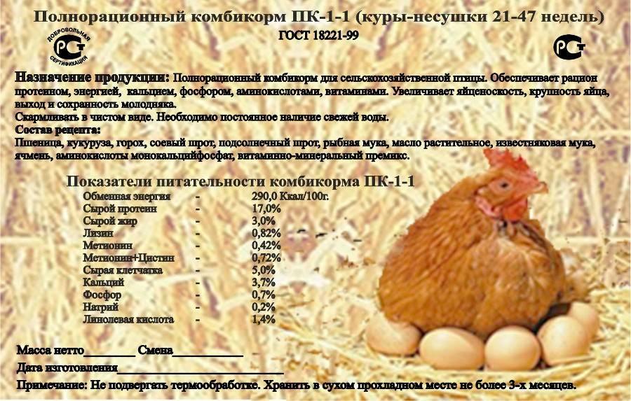 Комбикорм пк-4 для кур несушек: состав, характеристика и правила кормления